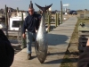Outer Banks Fishing Guide